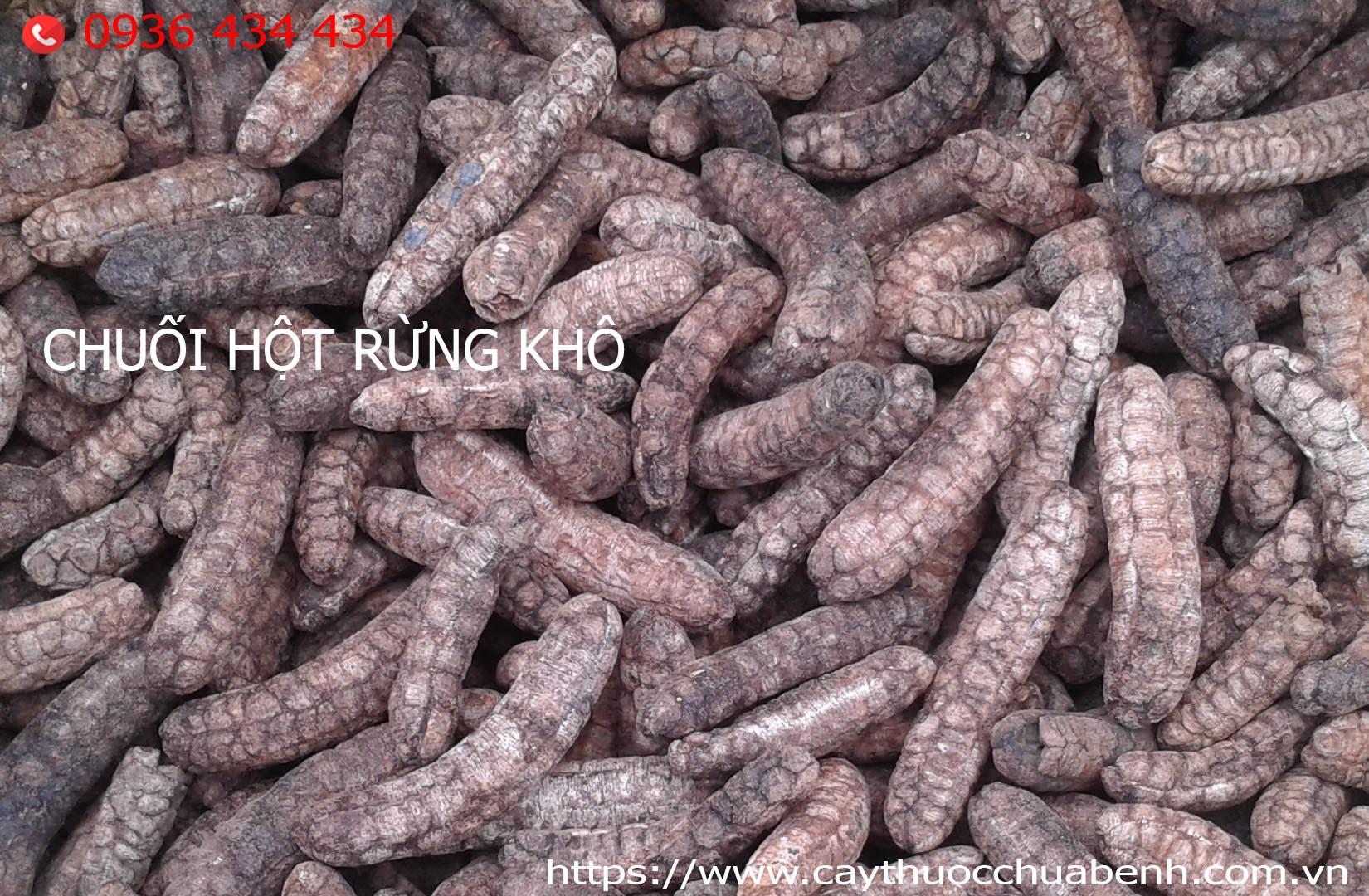 chuoi-hot-rung-kho-cty-duoc-lieu-hong-lan