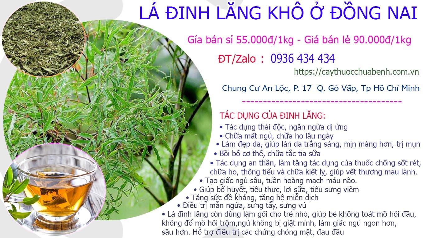 Mua bán sỉ và lẻ Lá Cây Đinh Lăng khô uy tín tại Đồng Nai giá từ 55.000đ/kg