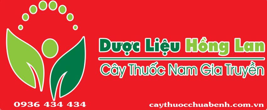 LOGO CONG TY TNHH DUOC LIEU HONG LAN