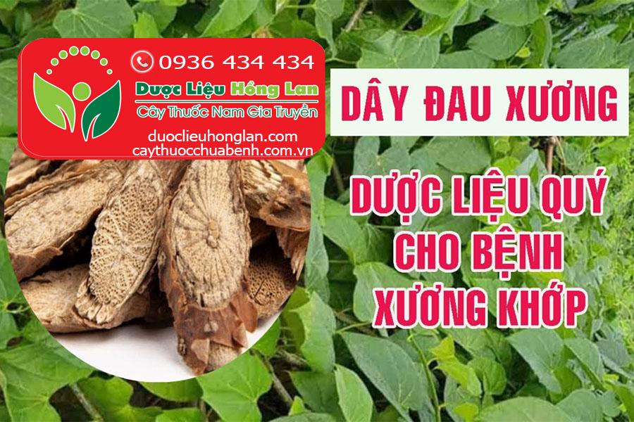 DAY_DAU_XUONG_KHOAN_CAN_DANG_KHO_DUOC_LIEU_HONG_LAN