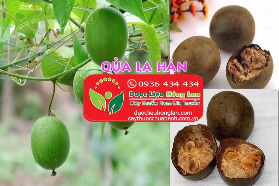MUA_BAN_QUA_LA_HAN_KHO_DUOC_LIEU_HONG_LAN