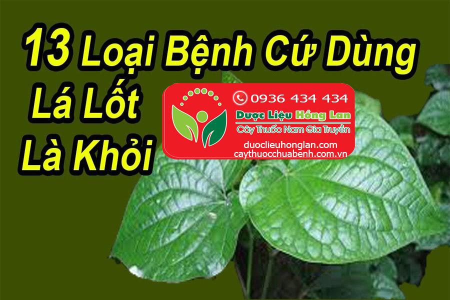 CONG-DUNG-CHUA-BENH-CUA-LA-LOT-congtyduoclieuhonglan