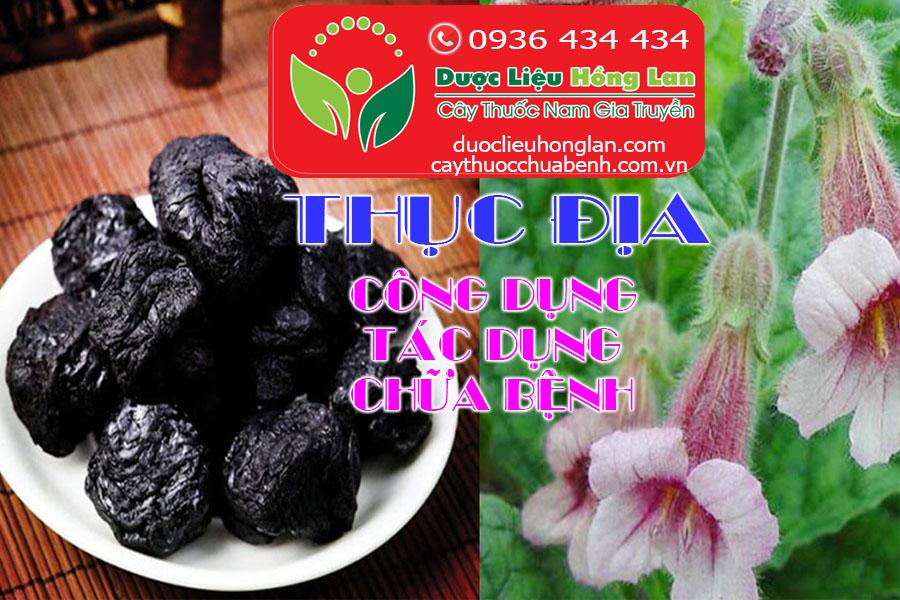 CONG-DUNG-TAC-DUNG-CHUA-BENH-CUA-THUC-DIA-CTY-DUOC-LIEU-HONG-LAN