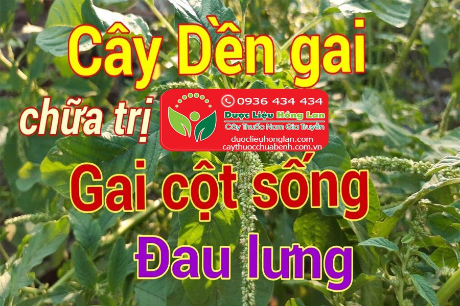 DEN-GAI-CHUA-DAU-COT-SONG-VA-DAU-LUNG-CTY-DUOC-LIEU-HONG-LAN