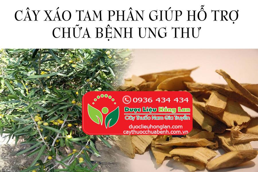 THAO-DUOC-XAO-TAM-PHAN-DIEU-TRI-5-LOAI-UNG-THU-DUOCLIEUHONGLAN
