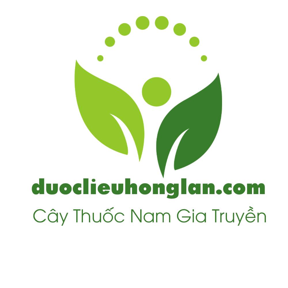 CONG-TY-THAO-DUOC-MUA-BAN-SI-LE-UY-TIN-TP.HCM