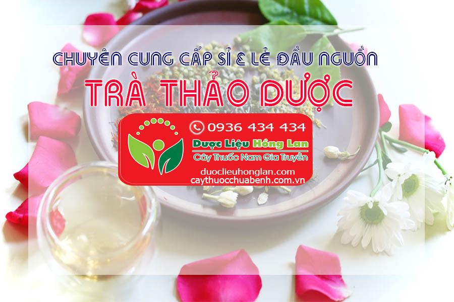 CUNG-CAP-SI-VA-LE-DAU-NGUON-TRA-THAO-DUOC-CTY-DUOC-LIEU-HONG-LAN 01