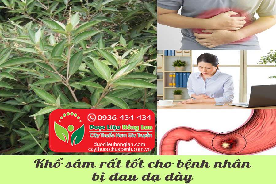 KHO-SAM-CHUA-BENH-DAU-DA-DAY-CTY-DUOC-LIEU-HONG-LAN