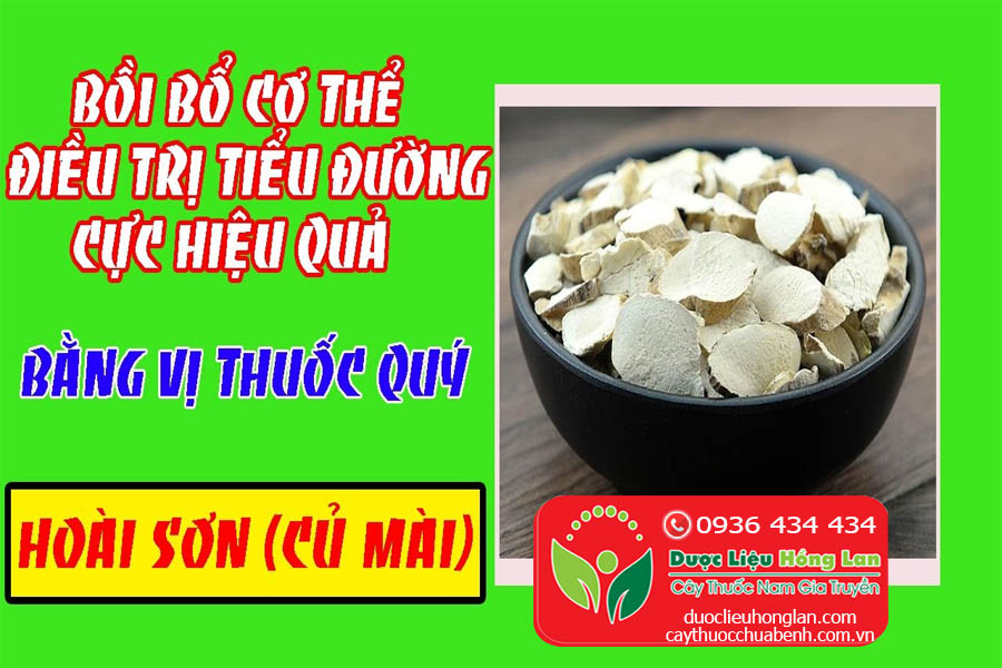 NHUNG-MON-NGON-TU-THAO-DUOC-HOAI-SON-CU-MAI-CTY-DUOC-LIEU-HONG-LAN