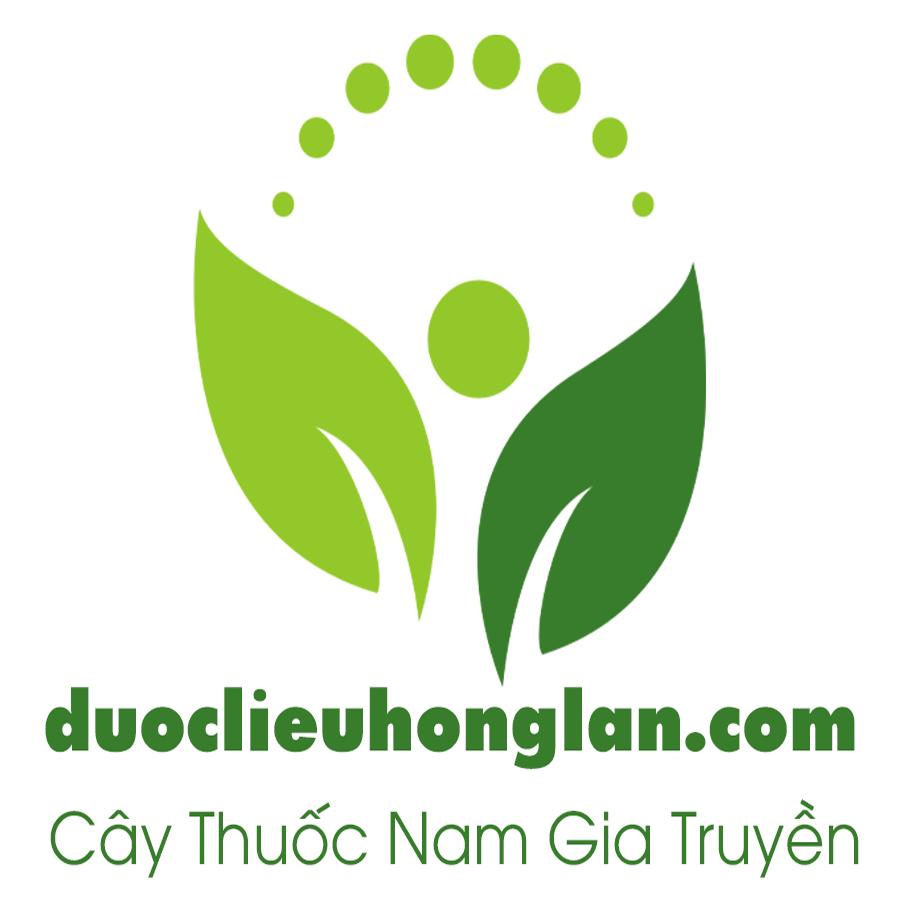cty-duoc-lieu-hong-lan-chuyên-cung-cap-si-le-dau-nguon-thao-duoc-cay-thuoc-nam-thuoc-dong-y-do-ngam-ruou-cao-bot-vien-duoc-lieu