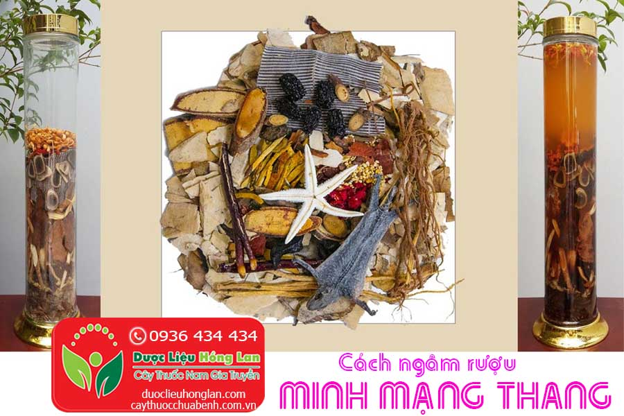 CACH-NGAM-RUOU-MINH-MANG-THANG-35-VI-CTY-DUOC-LIEU-HONG-LAN