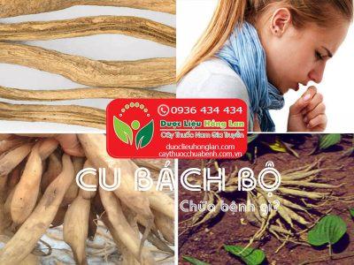 CU-BACH-BO-CU-30-CHUA-BENH-GI-CTY-DUOC-LIEU-HONG-LAN