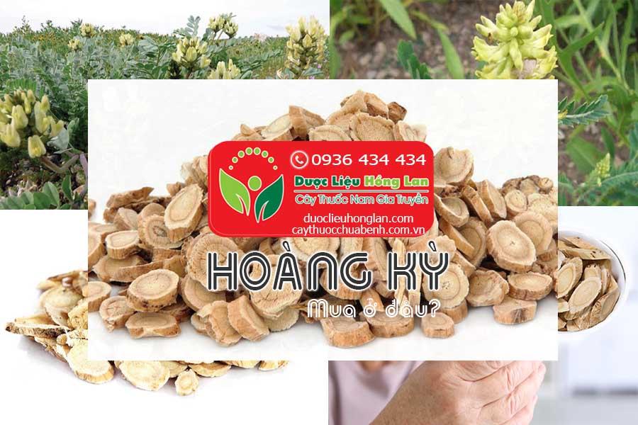 HOANG-KY-MUA-O-DAU-CTY-DUOC-LIEU-HONG-LAN