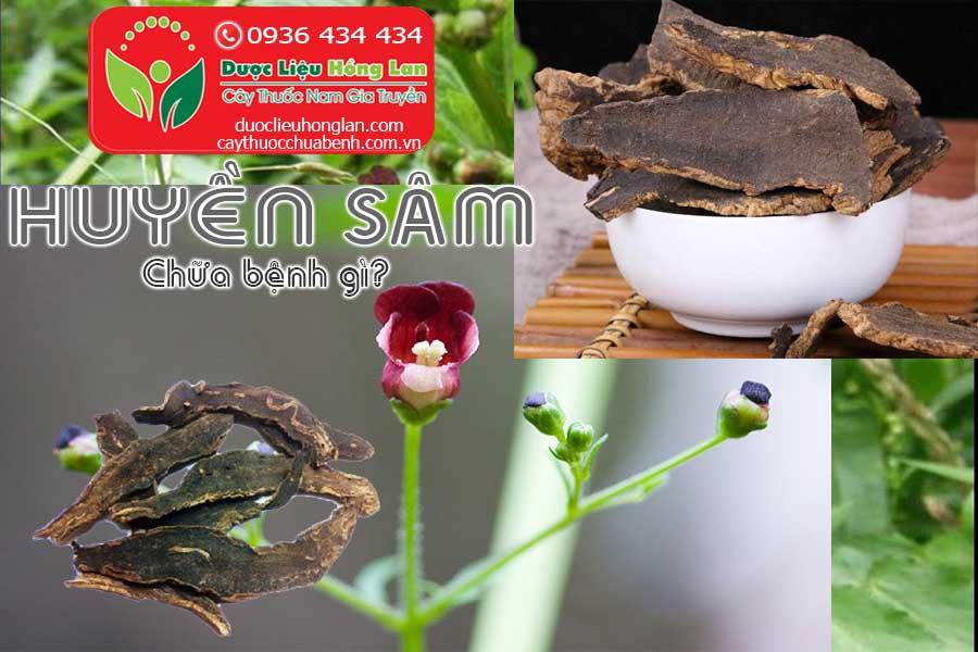 HUYEN-SAM-CHUA-BENH-GI-CTY-DUOC-LIEU-HONG-LAN