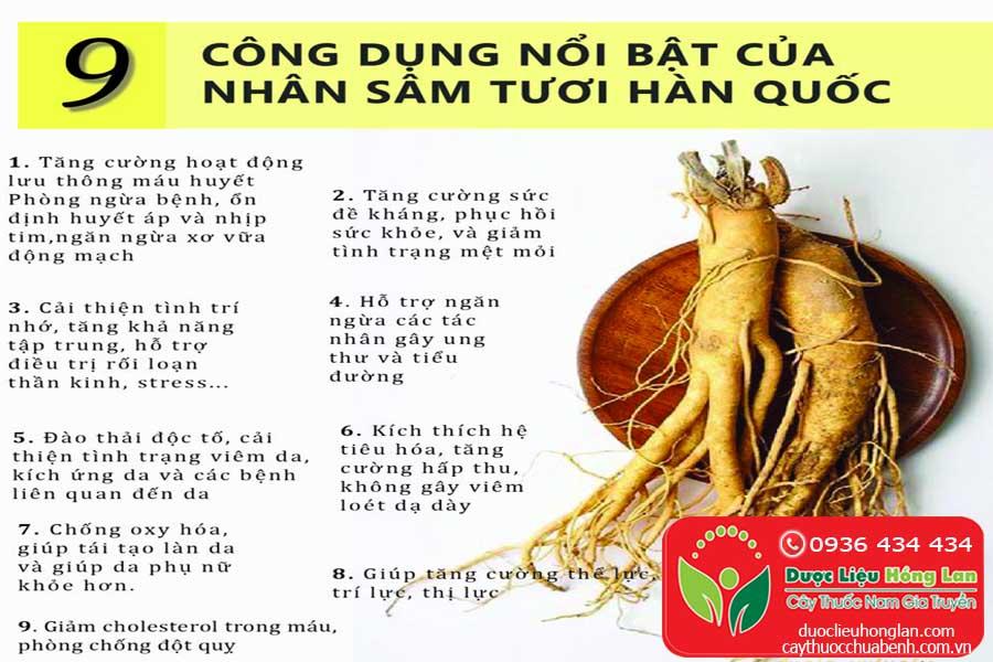 NHUNG-TAC-DUNG-CUA-CU-NHAN-SAM-HAN-QUOC-CTY-DUOC-LIEU-HONG-LAN