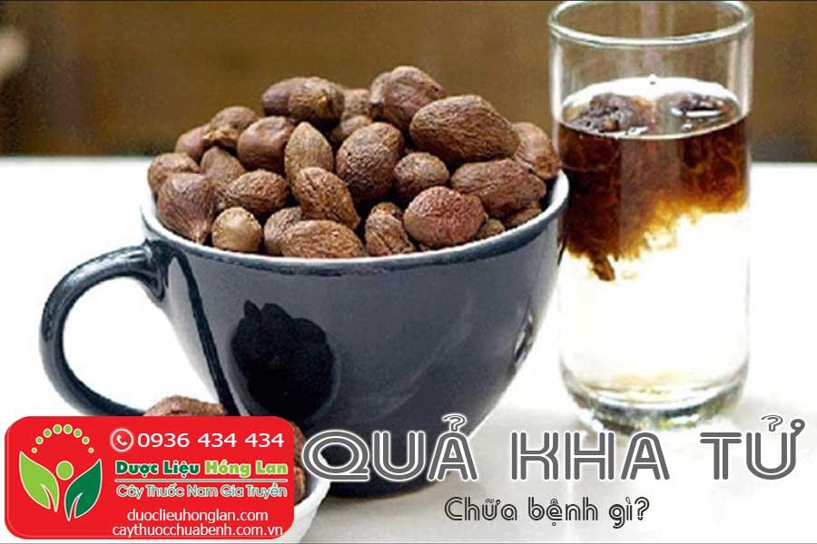 QUA-KHA-TU-CHUA-BENH-GI-CTY-DUOC-LIEU-HONG-LAN