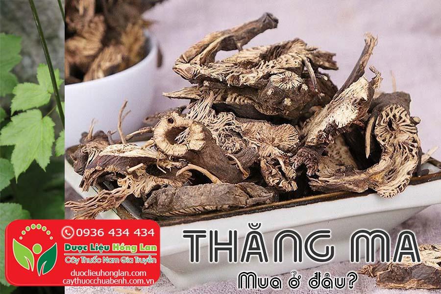 CAY-THUOC-THANG-MA-MUA-O-DAU-TPHCM-HA-NOI-CTY-DUOC-LIEU-HONG-LAN