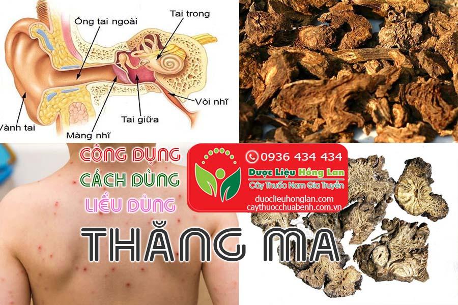 CONG-DUNG-CACH-DUNG-LIEU-DUNG-CAY-THUOC-THANG-MA-CTY-DUOC-LIEU-HONG-LAN