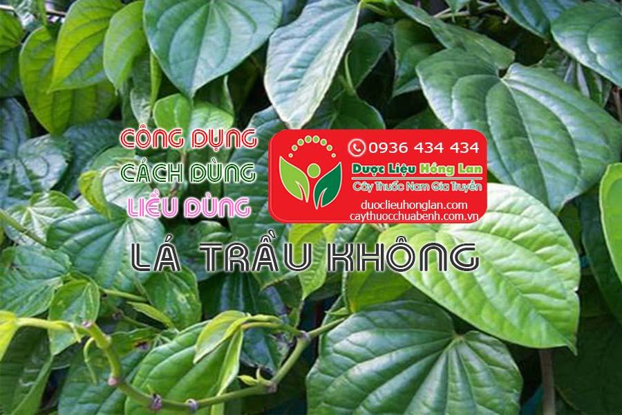 CONG-DUNG-CACH-DUNG-LIEU-DUNG-LA-TRAU-KHONG-CTY-DUOC-LIEU-HONG-LAN