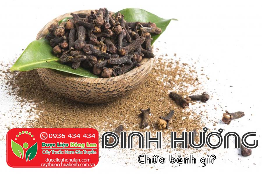 DINH-HUONG-CHUA-BENH-GI-CTY-DUOC-LIEU-HONG-LAN