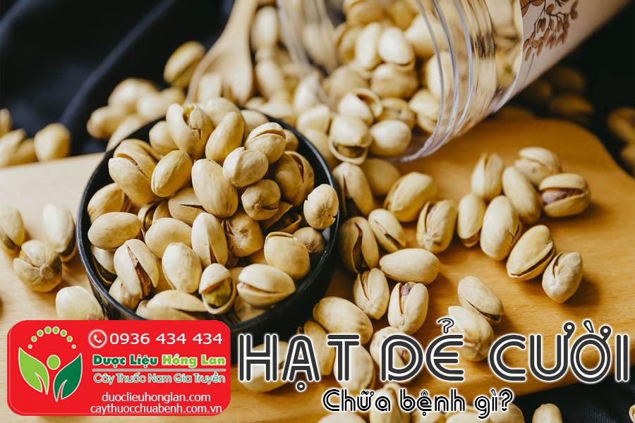 HAT-DE-CUOI-MY-CHUA-BENH-GI-CTY-DUOC-LIEU-HONG-LAN