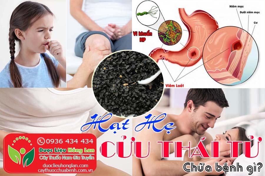 HAT-HE-CUU-THAI-TU-CHUA-BENH-GI-CTY-DUOC-LIEU-HONG-LAN