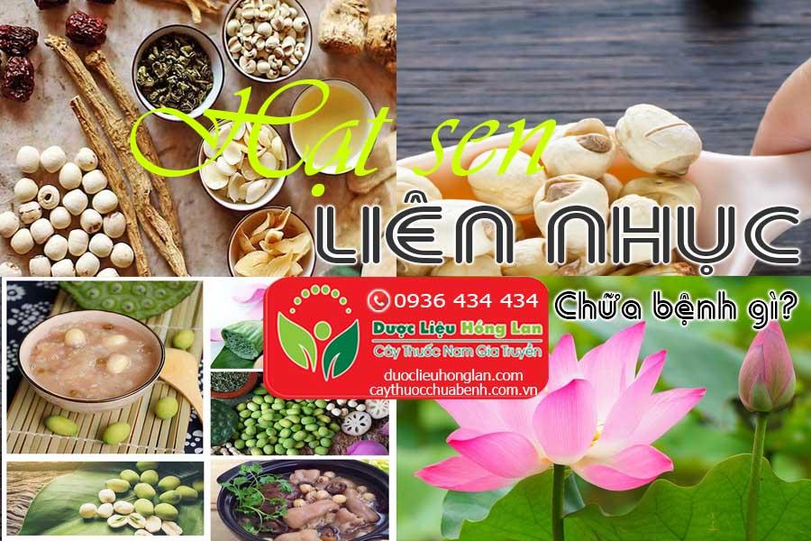 HAT-SEN-LIEN-NHUC-CHUA-BENH-GI-CTY-DUOC-LIEU-HONG-LAN