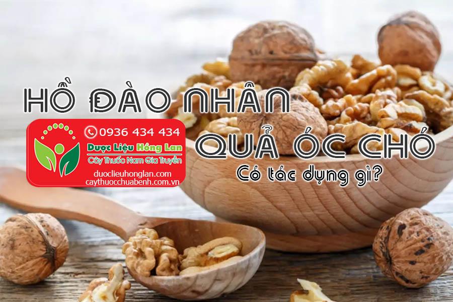 HO-DAO-NHAN-QUA-OC-CHO-CO-TAC-DUNG-GI-CTY-DUOC-LIEU-HONG-LAN