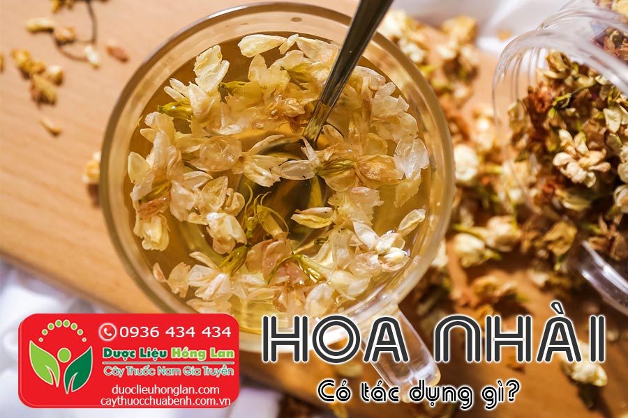 HOA-NHAI-CO-TAC-DUNG-GI-CTY-DUOC-LIEU-HONG-LAN