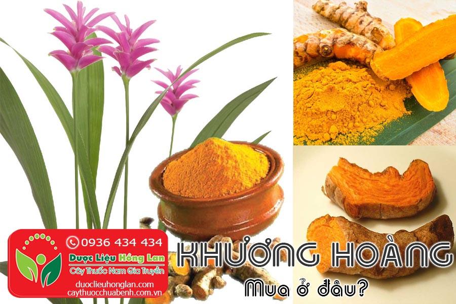 KHUONG-HOANG-BOT-NGHE-MUA-O-DAU-CTY-DUOC-LIEU-HONG-LAN