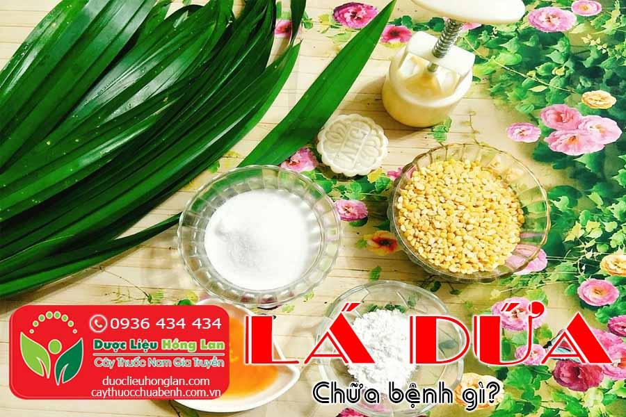 LA-DUA-CHUA-BENH-GI-CTY-DUOC-LIEU-HONG-LAN