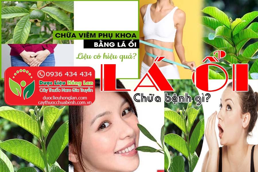 LA-OI-CHUA-BENH-GI-CTY-DUOC-LIEU-HONG-LAN