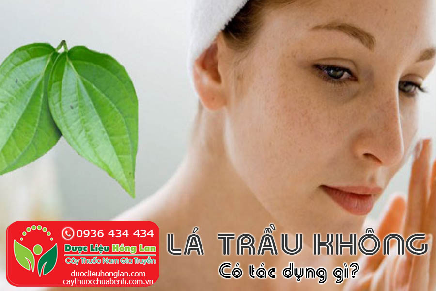 LA-TRAU-KHONG-CO-TAC-DUNG-GI-CTY-DUOC-LIEU-HONG-LAN