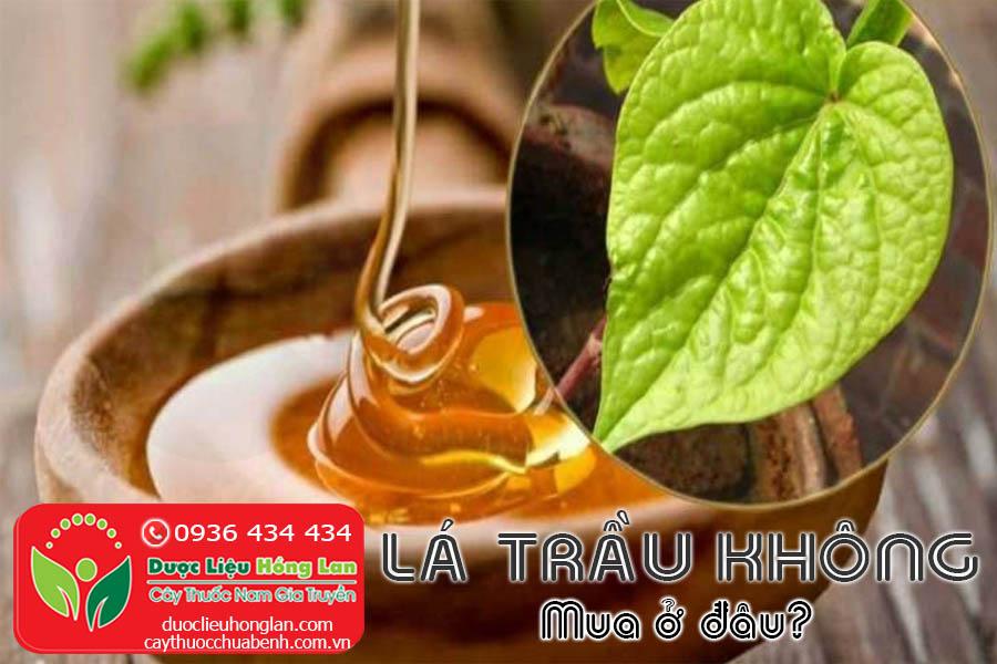 LA-TRAU-KHONG-MUA-O-DAU-TPHCM-HA-NOI-CTY-DUOC-LIEU-HONG-LAN