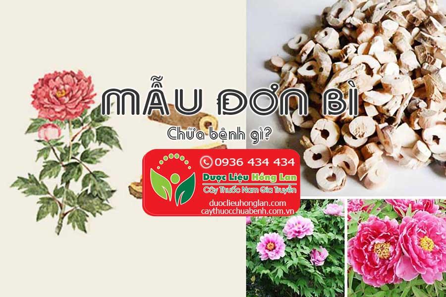 MAU-DON-BI-CHUA-BENH-GI-CTY-DUOC-LIEU-HONG-LAN