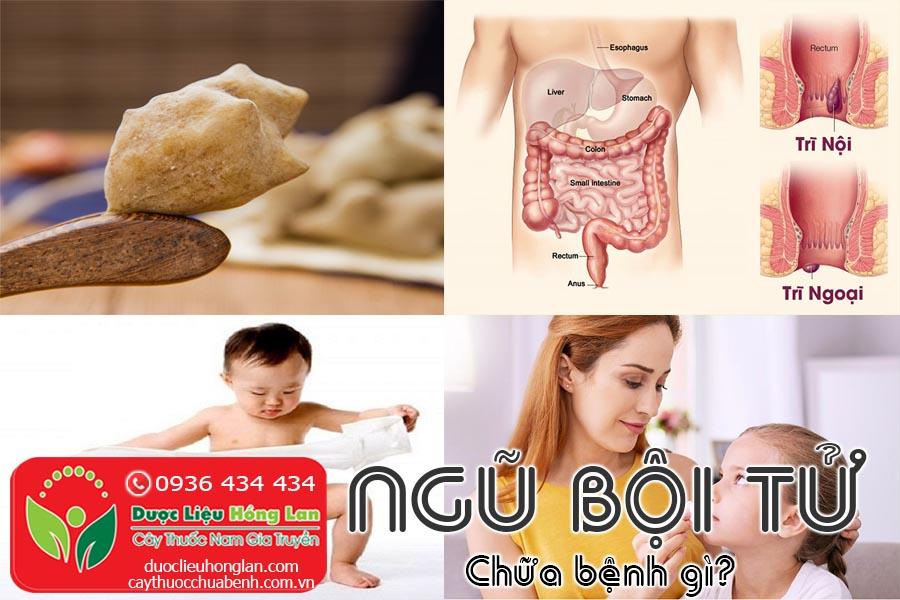 NGU-BOI-TU-CHUA-BENH-GI-CTY-DUOC-LIEU-HONG-LAN