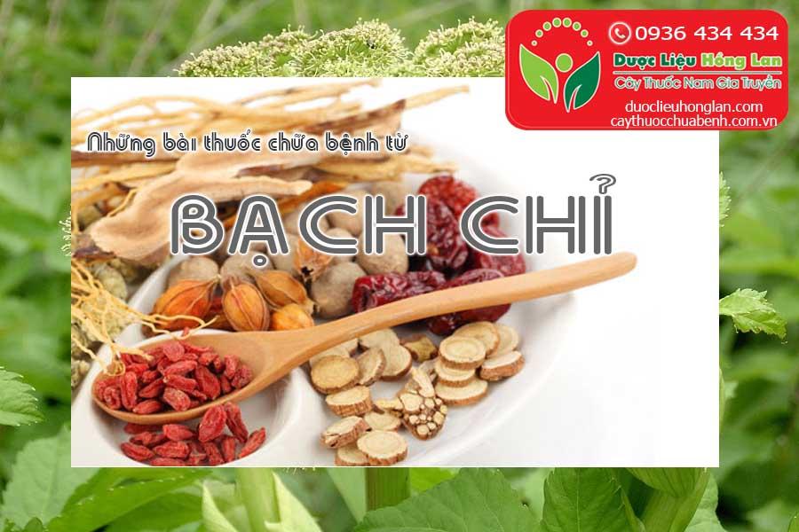 NHUNG-BAI-THUOC-CHUA-BENH-TU-BACH-CHI-CTY-DUOC-LIEU-HONG-LAN