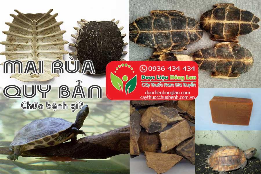 QUY-BAN-MAI-RUA-CHUA-BENH-GI-CTY-DUOC-LIEU-HONG-LAN