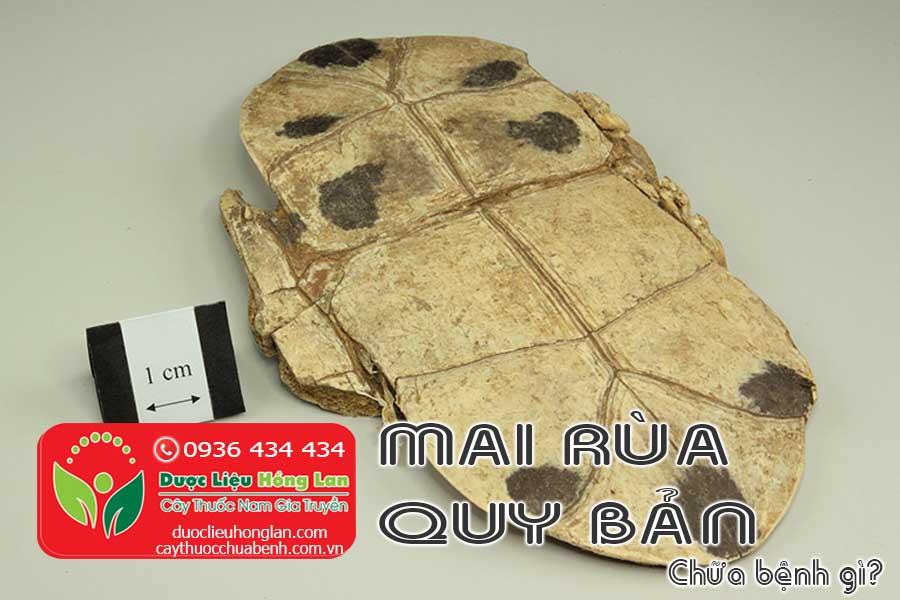 QUY-BAN-MAI-RUA-CO-TAC-DUNG-CHUA-BENH-GI-CTY-DUOC-LIEU-HONG-LAN