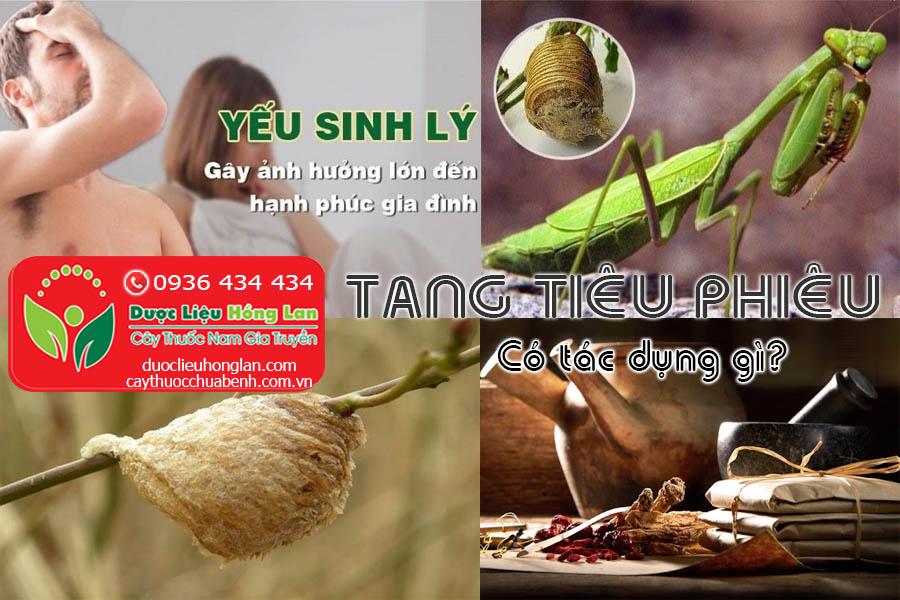 TANG-TIEU-PHIEU-CO-TAC-DUNG-GI-CTY-DUOC-LIEU-HONG-LAN