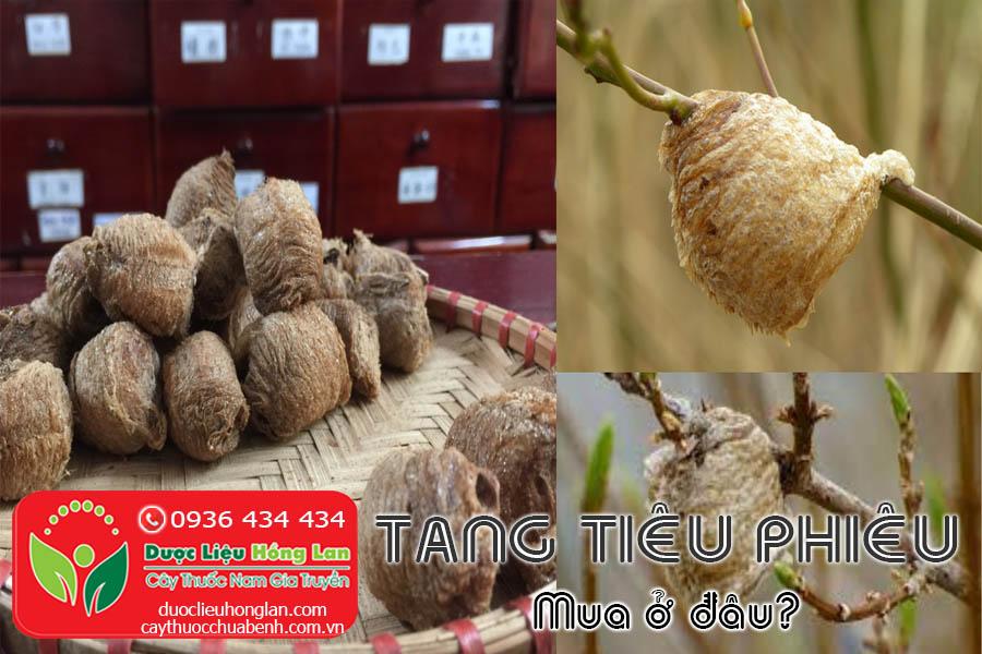 TANG-TIEU-PHIEU-MUA-O-DAU-TPHCM-HA-NOI-CTY-DUOC-LIEU-HONG-LAN