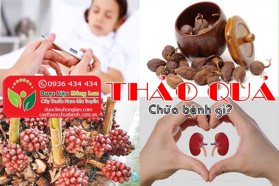 THAO-QUA-CHUA-BENH-GI-CTY-DUOC-LIEU-HONG-LAN