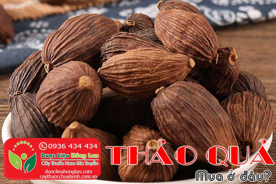 THAO-QUA-KHO-MUA-O-DAU-TPHCM-HA-NOI-CTY-DUOC-LIEU-HONG-LAN
