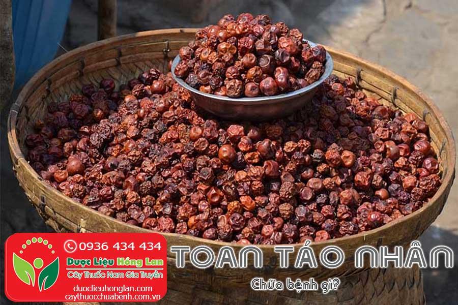 TOAN-TAO-NHAN-CHUA-BENH-GI-CTY-DUOC-LIEU-HONG-LAN