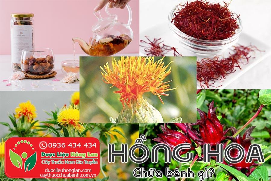 VI-THUOC-HONG-HOA--CHUA-BENH-GI-CTY-DUOC-LIEU-HONG-LAN