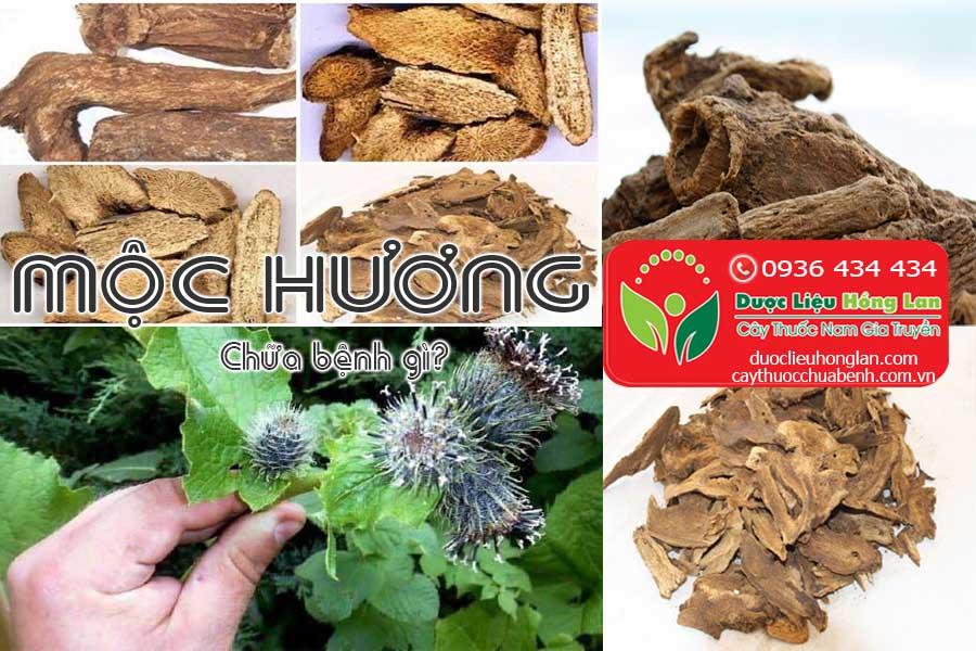 VI-THUOC-MOC-HUONG-CHUA-BENH-GI-CTY-DUOC-LIEU-HONG-LAN