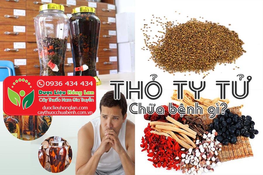 VI-THUOC-THO-TY-TU-CHUA-BENH-GI-CTY-DUOC-LIEU-HONG-LAN