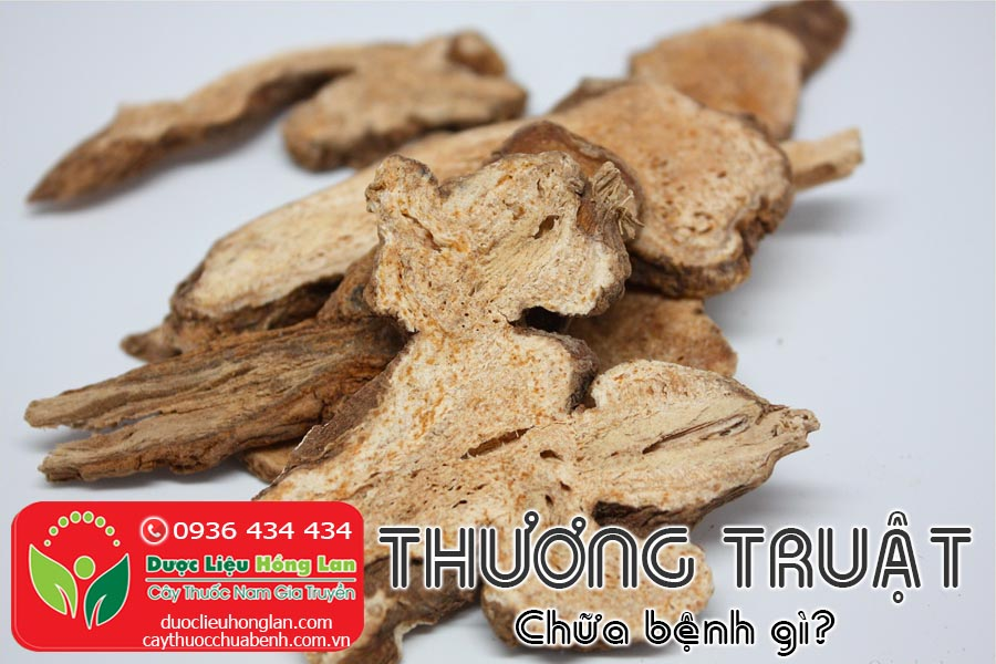 VI-THUOC-THUONG-TRUAT-CHUA-BENH-GI-CTY-DUOC-LIEU-HONG-LAN