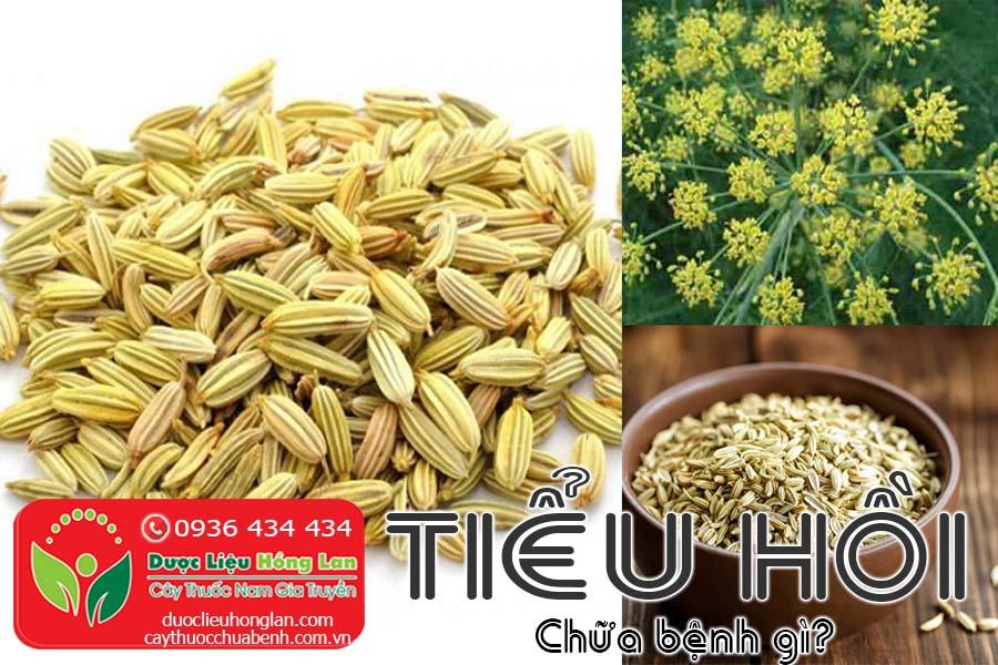 VI-THUOC-TIEU-HOI-CHUA-BENH-GI-CTY-DUOC-LIEU-HONG-LAN