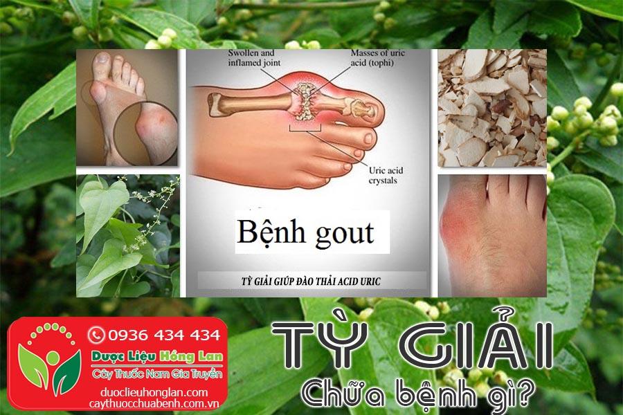VI-THUOC-TY-GIAI-CHUA-BENH-GI-CTY-DUOC-LIEU-HONG-LAN